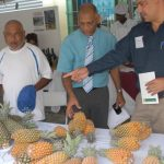 Guyana Shop hosts fantastic exhibition of pineapple-based products
