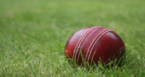 cricket_ball