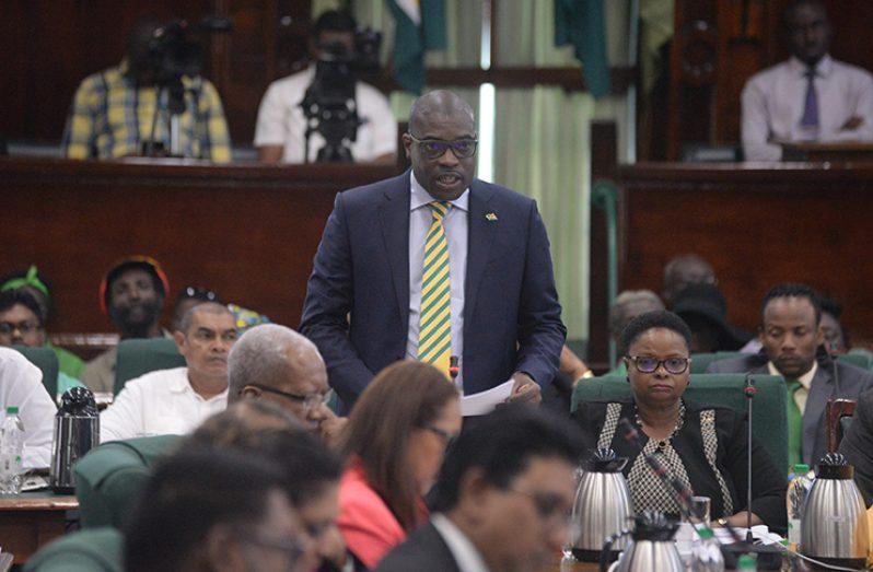 Minister of Public Infrastructure David Patterson (Delano Williams photo)