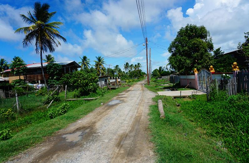 Ross Village (Carl Croker photos)
