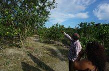 Dhaneeran Mangal on his farm