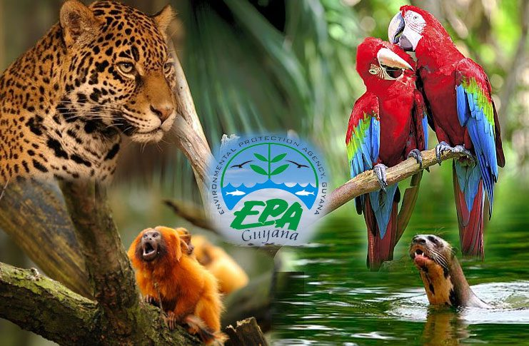 epa-741_environmental_protection_agency