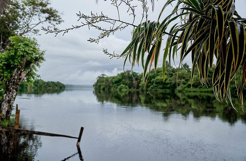 The majestic Demerara River runs through Old England Village (Samuel Maughn photos)