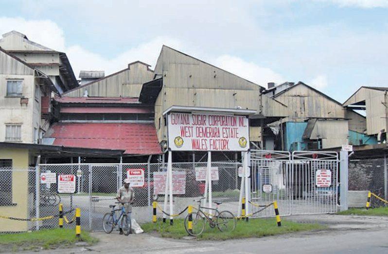 The Wales Sugar Estate